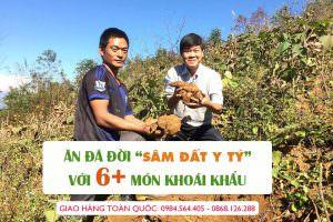 chế biến sâm đất yacon