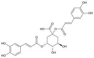 Dược liệu Actiso