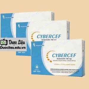 Cybercef
