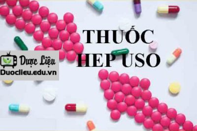 Hep – Uso