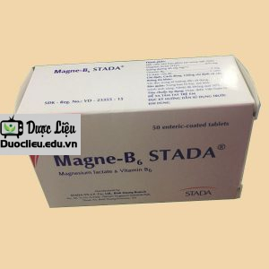 Magne B6 Stada