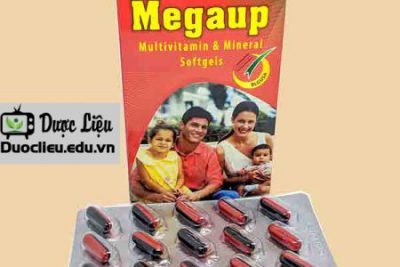 Megaup