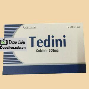 Tedini